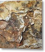 Natures Rock Art Metal Print