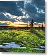 Dolly Sods Wilderness Metal Print