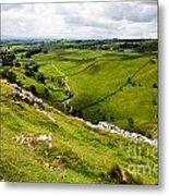 Yorkshire Dales National Park Metal Print