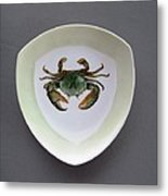 866 4 Part Of The Crab Set 1 Metal Print by Wilma Manhardt