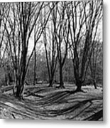 Ambresbury Banks Bronze Age Fortification Metal Print