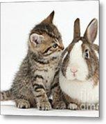 Kitten And Rabbit Metal Print