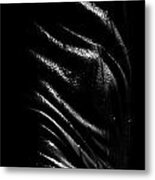 Liquid Latex Metal Print