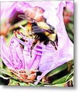 A Bees World Metal Print