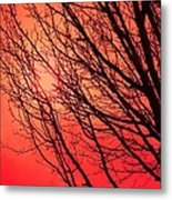 A Black Winter Tree On Red Metal Print