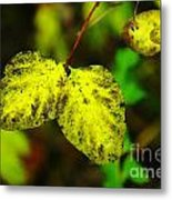 A Bright Yellow Dying  Metal Print