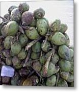 A Bunch Of Tender Coconuts Being Sold By A Vendor On The Street Metal Print
