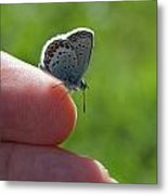 A Butterfly On The Finger Metal Print