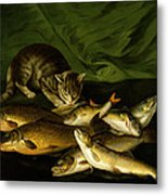 A Cat With Trout Perch And Carp On A Ledge Metal Print
