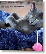 A Cats Function Metal Print