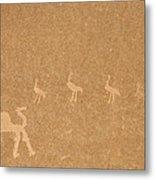 A Close View Of Ancient Petroglyphs Metal Print