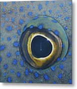 A Close View Of The Eye And Skin Metal Print