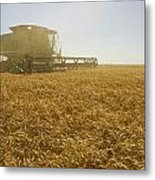 A Combine Harvester Works A Field Metal Print