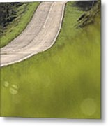 A Country Road In Virginia Metal Print