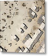 A Crowded Camel Market In Nguigmi Metal Print