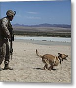 A Dog Handler Conducts Improvised Metal Print by Stocktrek Images