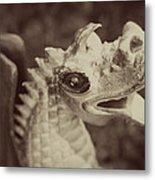 A Dragon's Tale - Series 2 Metal Print