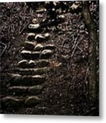 A Few More Steps Metal Print