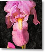 A Flora Is Natures Painting Metal Print