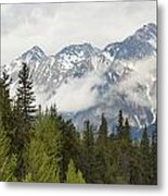 A Forest And The Rocky Mountains Metal Print
