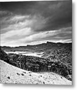 A Forest Area Along The Coast Under A Metal Print