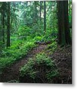 A Forest Green Metal Print