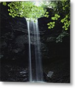 A Gentle Woodland Waterfall With Maple Metal Print