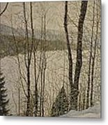 A Glimpse Of The Forest Metal Print
