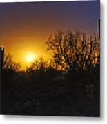 A Golden Saguaro Sunrise Metal Print