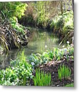 A Green And Peaceful Place  Metal Print