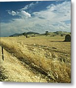 A Hay Field With Bales Sitting Metal Print