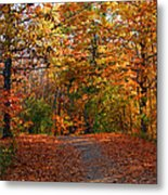 A Hikers Dream Metal Print by James Hammen