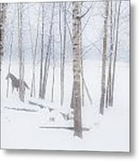 A Horse Stands Beside A Forest Of Bare Metal Print