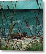 A Hot Wednesday Afternoon Metal Print