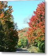 A Lazy Fall Day Metal Print