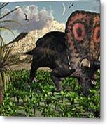 A Lone Torosaurus Dinosaur Feeding Metal Print