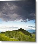 A Lush Green Landscape With Grassy Metal Print
