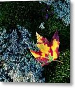 A Maple Leaf Lies On A Bed Of Moss Metal Print