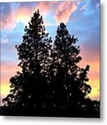 A Matchless Moment Metal Print