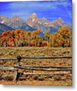 A Moment In Wyoming In Autumn Metal Print
