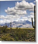 A Morning In The Desert  Metal Print
