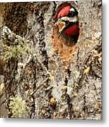 A Mouthful..excavation Metal Print