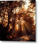 A New Dawn Metal Print