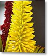A Pair Of Yellow And Red Metal Print