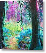 A Path Along A River Metal Print
