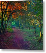 A Place Of Mystery Metal Print