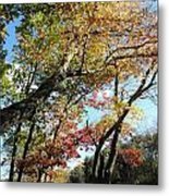 a rainbow of colors in CT Metal Print