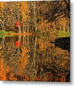 A Reflection Of October Metal Print