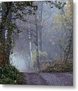 A Road Through A Misty Wood Metal Print