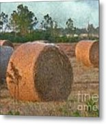 A Roll In The Hay Metal Print